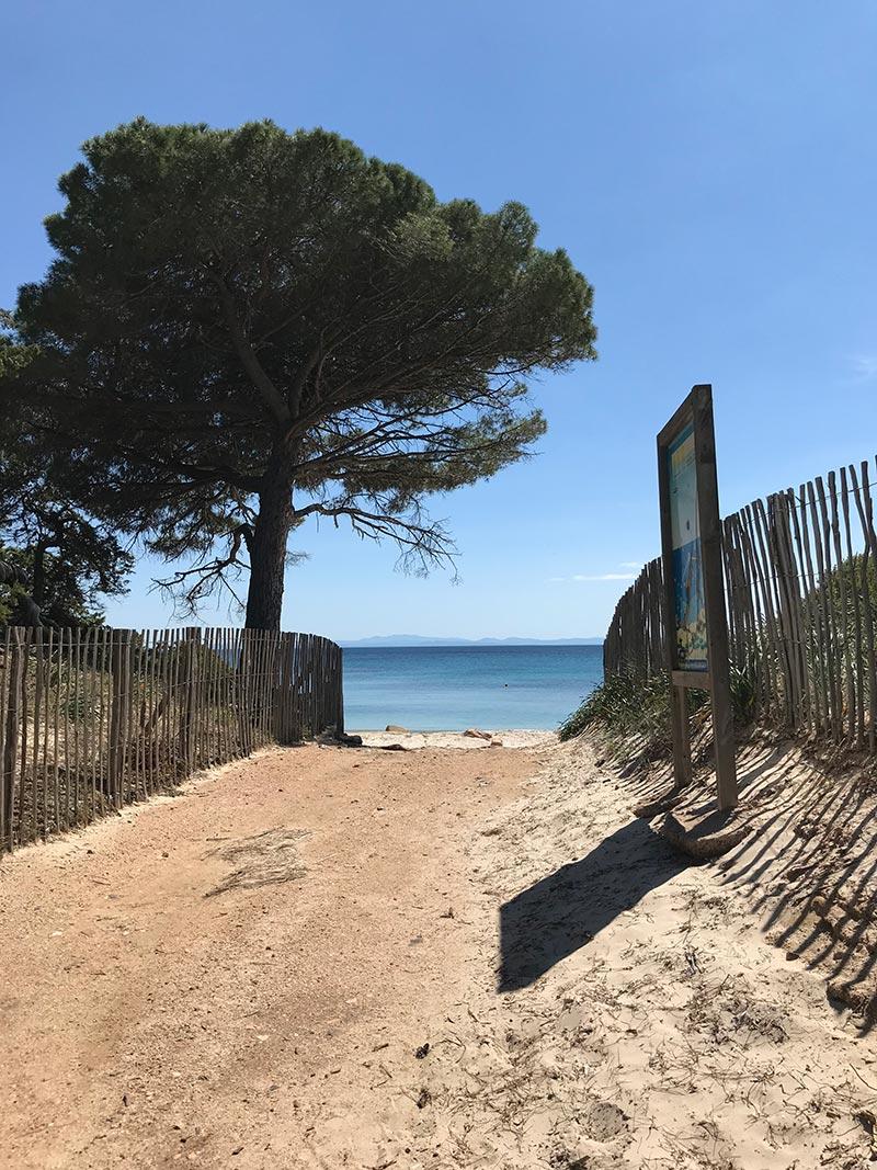 Plage de Palombaggia - Résidence Pietra Di Sole